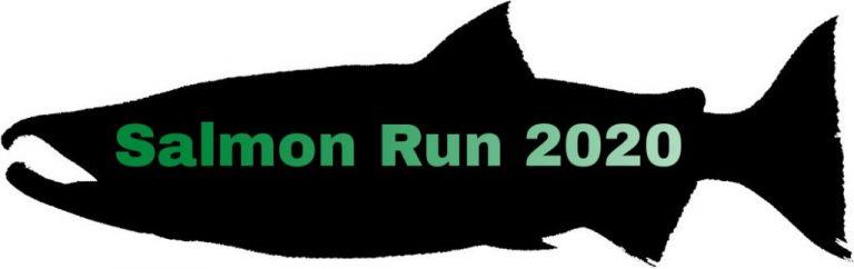 Salmon Run 2020